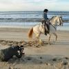 Doñana, un escenario de ensueño para el spot de la temporada