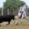 Tarde de tentadero en la ganadería de Guillermo Acosta