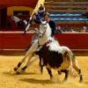 Romero prepara Sevilla en La Merced